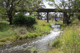Picture relating to Deepwater River - titled 'Four Mile Creek near the confluence with Deepwater River'