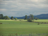 Picture relating to Evandale - titled 'View from Evandale towards the Western Tiers'
