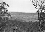 Picture relating to Manuka - titled 'Telopea Park and Manuka from Mt Ainslie, Capital Theatre in the centre.'